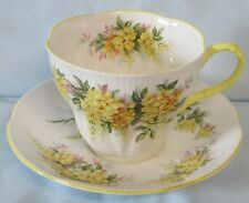 Royal Albert Cup and Saucer Blossom Time Series Laburnum