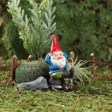 "Miniature Garden Rufus Sleeping Gnome"" c/w Pick, Terrarium, Fairy"