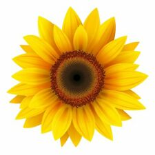 YELLOW SUNFLOWER DECAL 3M USA MADE STICKER CAR TRUCK WINDOW BUMPER WALL DAISY