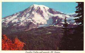 Vintage Postcard Paradise Valley & Majestic Mt. Ranier National Park WA