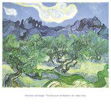 Vincent VAN GOGH The Olive Trees, 1889 ART PRINT POSTER