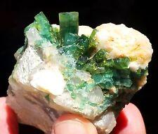 1280 Carats Huge Green Color Bunch of Tourmaline W/ Quartz Specimen Afghanistan