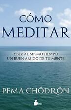 Como Meditar: Y Ser al Mismo Tiempo un Buen Amigo de Tu Mente = How to Meditate