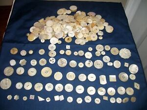 Large Lot of Vintage Antique White Shell Carved Mother of Pearl Buttons Lovely!