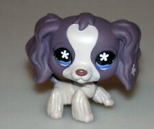 Littlest Pet Shop Purple Cocker Spaniel Dog Blue Eyes #672 Retired