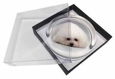 Bichon Frise Dog Glass Paperweight in Gift Box Christmas Present, AD-BF1PW