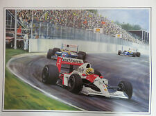 Ayrton Senna Brazilian GP  World Champion 1991  McLaren Honda MP4/6