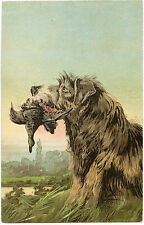 CHIEN DE CHASSE EN ACTION.GAUFRé.HOUND DOG IN ACTION.EMBOSSED