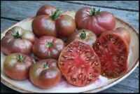 30 CHEROKEE PURPLE TOMATO SEEDS HEIRLOOM 2019 ( NON-GMO FREE SHIPPING! )