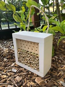 Australian Solitary Bee House | Ladybird and Insect Hotel | Mixed Small Painted