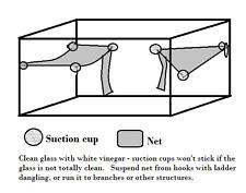Hermit Crab Corner Net / hammock with ladder large