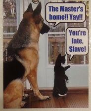 Difference Cat and Dog The master's home! Yay! You're late Slave! pet magnet