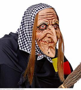 Hexenmaske Mit Haaren & Kopftuch