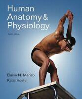 Human Anatomy And Physiology by Elaine N Marieb