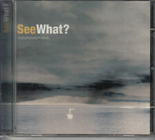 CD ALBUM SEE WHAT? / ELECTRO ACOUSTIC AMBIENT