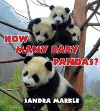 How Many Baby Pandas? by Markle, Sandra
