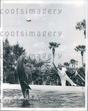 1956 Man Tosses Football to Algae The Porpoise Marineland Florida Press Photo