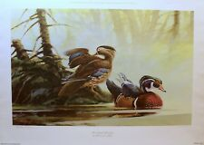 WOODLAND WOODIES BY MARTIN R MURk  (Limited Edition)