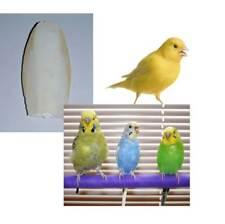 Os Seiche calcium pour Oiseaux Canaries Chardonnerets perruches seiche 1 Unité
