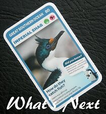 Woolworths <<AUSSIE ANIMALS>> Card 80/108 GREAT SOUTHERN OCEAN Imperial Shag