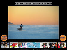 """Iditarod """"Take Along Paws"""" Poster: Proceeds go to national cancer charities"""
