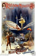 Rossow Midgets Act Show No. 1 VAUDEVILLE Fine Art Print / Poster Little People
