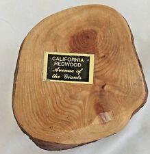 "Brown 3X4"" Cilifornia Redwood Giant Pencil Holder Figurine"