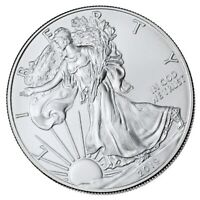 American Statue of Liberty Commemorative Coin Our Nation Collectible Medallion