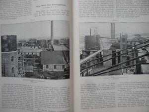 1900 Erdöl Petroluem Gröling Estlander