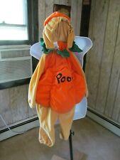 Pooh Bear Dressed as Pumpkin Halloween Costume Disney 18 to 24 Months