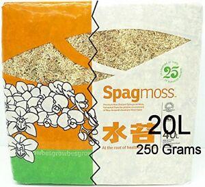 Spagmoss Premium New Zealand Sphagnum Moss AA Grade (250 Grams)