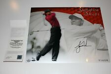 TIGER WOODS SIGNED UDA 16x20 SIGNATURE SHOTS LIMITED EDITION #73/100 RARE