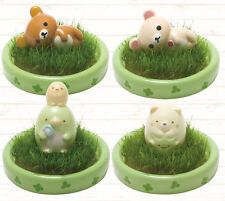 Korilakkuma Mini Garden Rilakkuma Bear Planter Shippon Kawaii Ceramic Figure ❤️