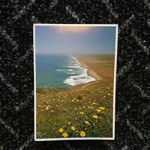 Point Reyes Posted Stamped Postcard