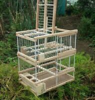 Cage with one Trap // Trap Birds // Hunting Birds Cage // Expert disarm system