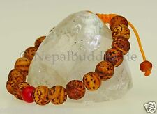 Bodhi Tree Bracelet Seeds Polished Balls (11mm) Nepal S40