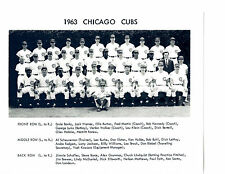 1963 CHICAGO CUBS  8X10 TEAM PHOTO WILLIAMS BROCK SANTO  BASEBALL MLB HOF