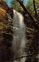 CLAYTON GEORGIA STEKOA CREEK BECOMES STEKOA FALLS POSTCARD 1960s
