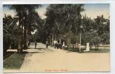(Gy693-460) Orange Park, SABANG, Indonesia c1910 EX