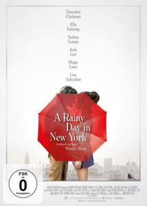 A Rainy Day in New York, Timothee Chalamet