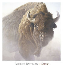 Chief by Robert Bateman Art Print Buffalo Bison Wildlife Decor Poster 28x26