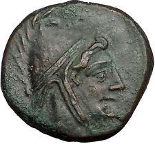 AMISOS in PONTUS MITHRADATES VI the GREAT Time Perseus Pegasus Greek Coin i52545