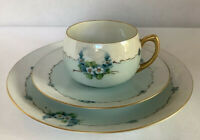 "T. Jorgensen Lusterware Bavaria Set -7 1/2"" Dessert Plate With Teacup & Saucer"