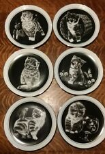 Vintage 1979 Kitten's World Collector plates by Droguett Set Of 6
