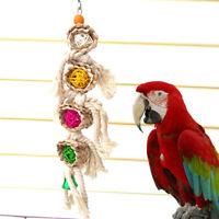 Pet Birds Parrot Swing Cage Chew Bites fr Parakeet Cockatiel Cockatoo Conure Toy