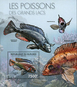Fish of Great Lakes Stamp Lithochromis Rufus Haplochromis S/S MNH #2782 / Bl.280