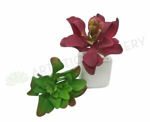 NEW Artificial Flowers/Plants SP0179 Small Succulent Real Touch 24m Green / Red