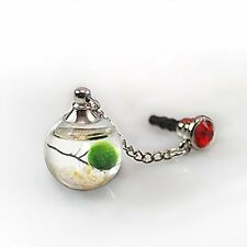 Living Pet Marimo Dust Plug Water Ball with Stones