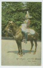 Sergeant Major 2nd Life Guards Shureys Military Postcard, B993