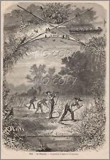 1879 : ILLUSTRATION / GRAVURE : LA FENAISON  par Yan' DARGENT